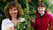 Beechgrove Garden series image