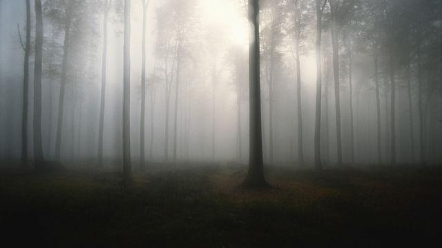 Matthew Broughton - The Rain Maker (BBC)