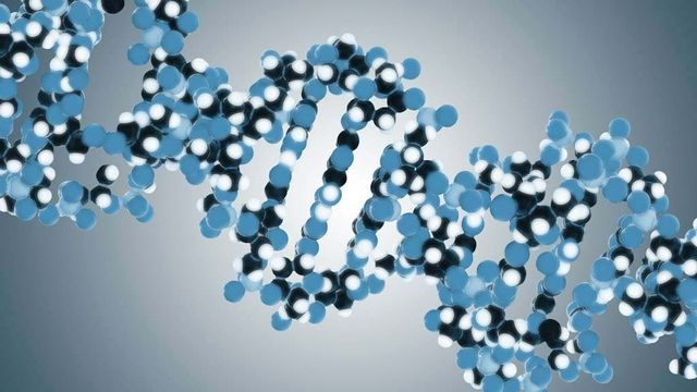 episode image for genetic