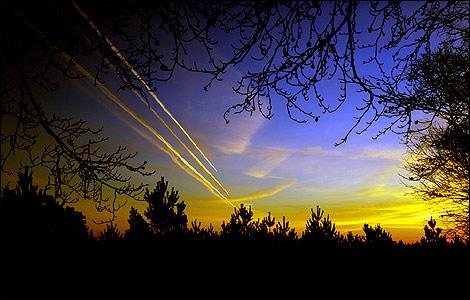 اجمل صور الطبيعة الخلابة Padworthcommon_11_470x300
