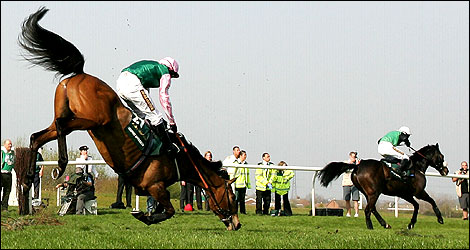 Graphic Approach falls at a fence at Aintree