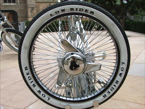 Nnc Poal New Wheel New Bike Or Just Replace The Spokes