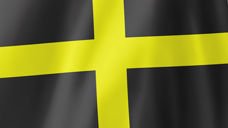 Flag of St David
