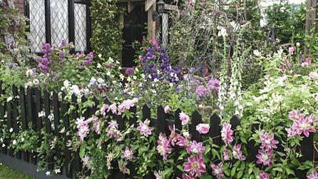 BBC RHS Chelsea Flower Show 2009 Generation Gardens