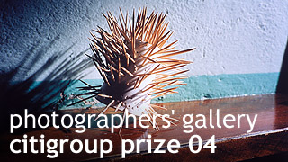 citigroup photography, the photographer's gallery