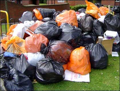 100 пакетов с мусором ежедневно убирают экологические отряды.