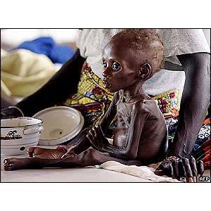 Hladomor v Nigeru
