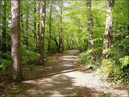 The Tarka Trail