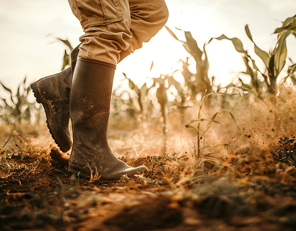 legs of a farmer in a dusty field