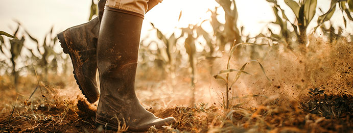 farmer boot in a dusty field