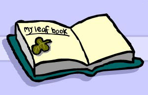 Leaf book for collecting leaves