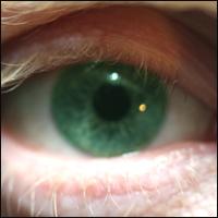 Close-up of a human eye.