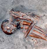 The skeleton of a mummy found in rock on South Uist