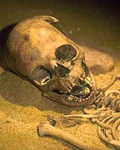 Skeleton of a child burial with a stone in the oral cavity