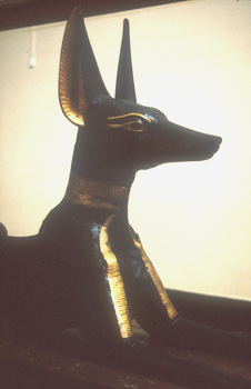 http://www.bbc.co.uk/history/ancient/egyptians/images/animals_anubis.jpg