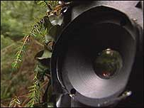 How To Hide Cameras