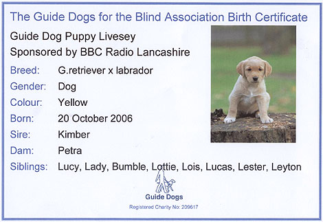 free puppy birth certificate template .