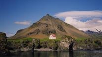 Icelandic, Arnastapi, Iceland © Annabel Else