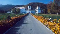 Sambata, Brancoveanu Monastery, Romania © BBC