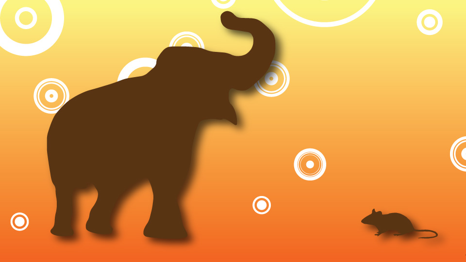 BBC School Radio: Aesop's Fables - The Rat and the Elephant