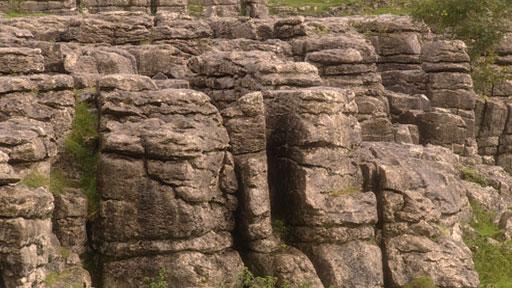 BBC - GCSE Geography - Formation of carboniferous limestone