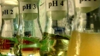 Bacterial growth and pH