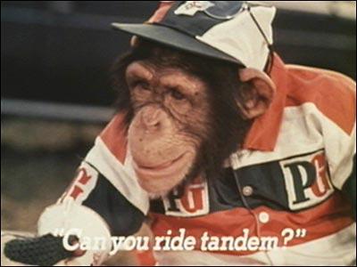 pg chimps