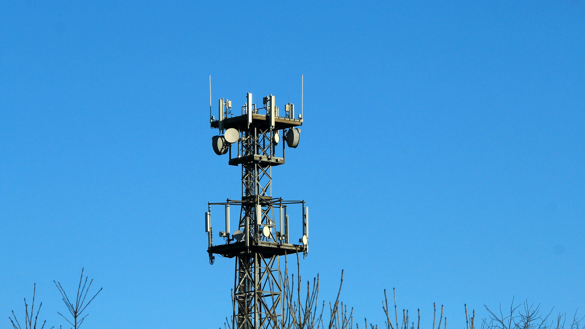 A skyline with a mobile radio mast above treetops.