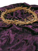 Crown of thorns and purple robe
