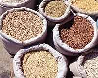Sacks of grain and beans