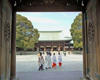 Priests and shrine maidens in traditional costume seen crossing the courtyard from inside Meiji Shrine