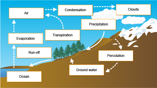 Diagram showing the key stages in the hydrological cycle