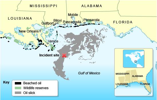 An analysis of exxon valdez oil spill