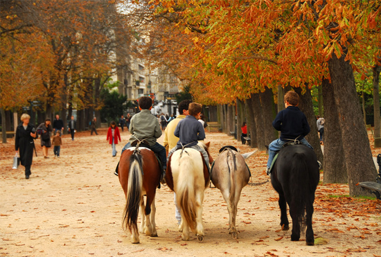 Boys riding horses in autumn