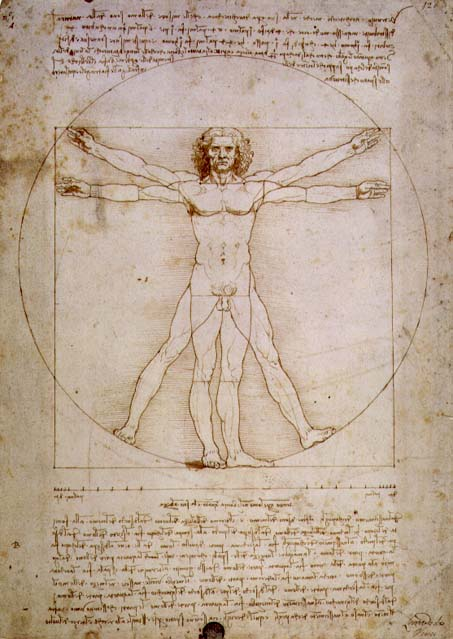 leonardo da vinci and his contributions to humanities Da vinci also had interests in other fields including architecture, botany, geology, music and literature but it wouldn't be possible to cover all his contributions in a single article know about the main works of leonardo da vinci by studying his 10 major accomplishments and achievements.