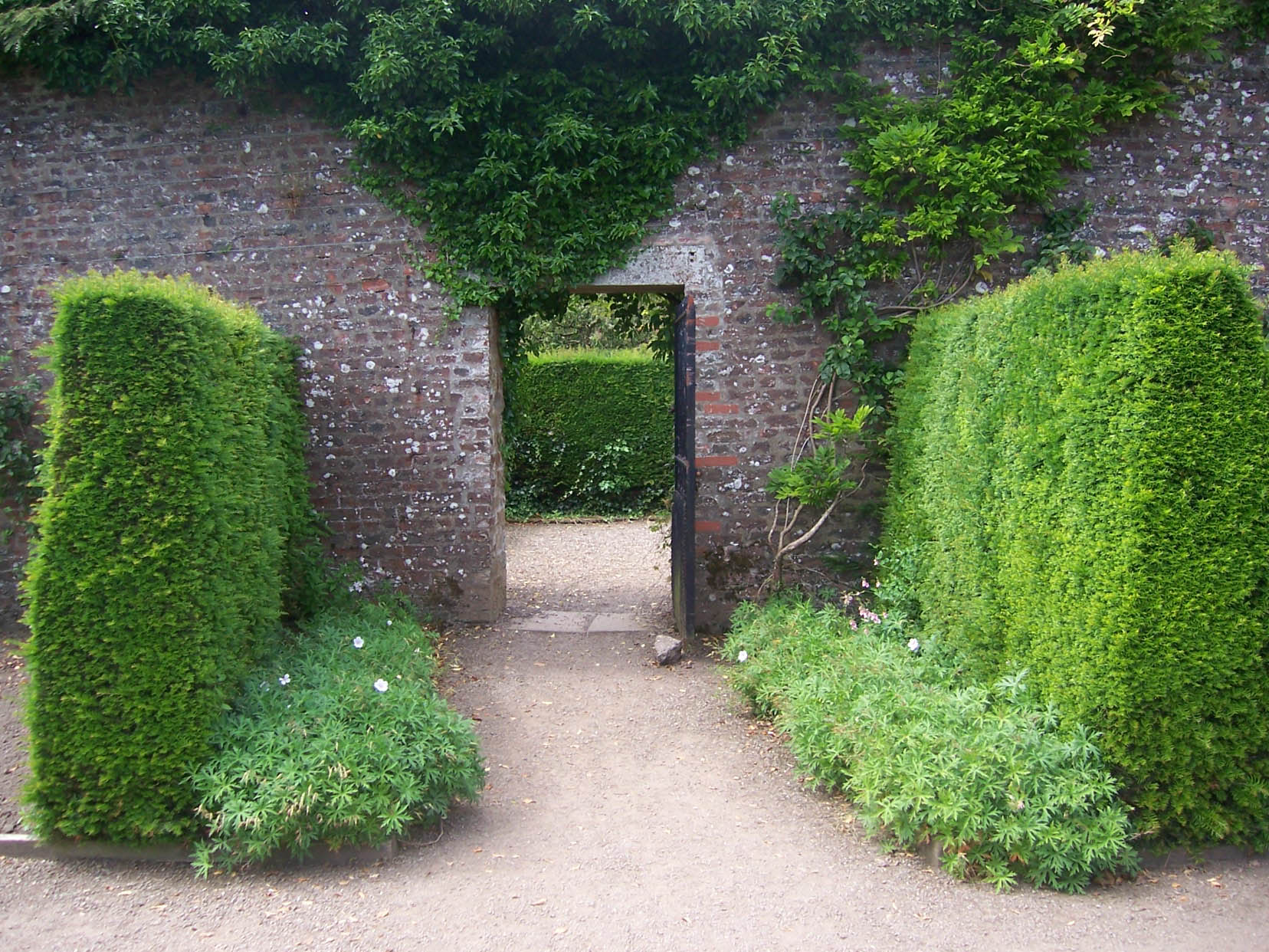 Are you loving publishing today?: Welcome to the beautiful garden ...