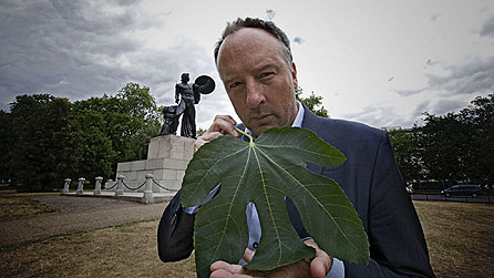 Stephen Smith presents Fig Leaf