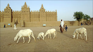 Woman with cow outside Djenne mosque, Mali