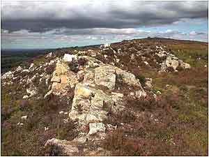 Stiperstones Stiperstones c/o Shropshire Wildlife Trust and Ben Osborne