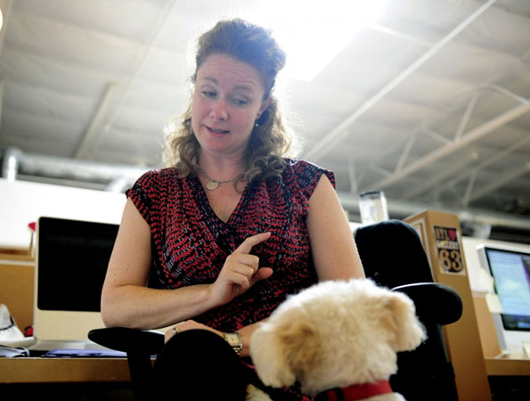 Dolly the dog gets take to work