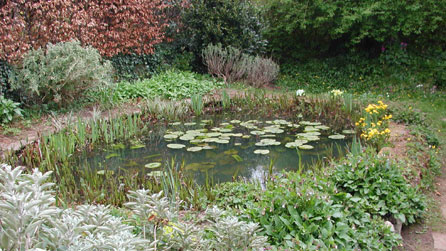 Bbc breathing places build a pond for Making a natural pond