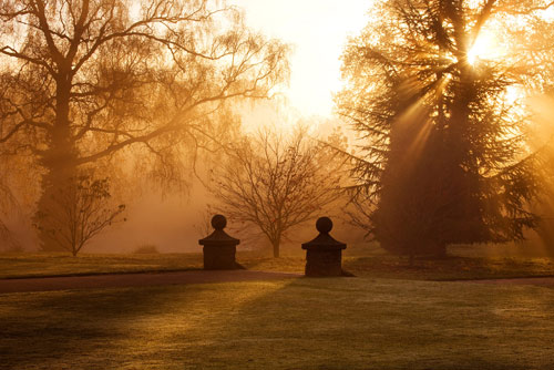 Bbc Gardening Blog Improve Your Garden Photography