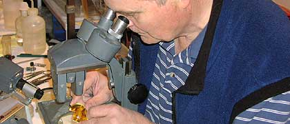 George Poinar examines a piece of amber