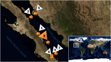 Dive map - Sea of Cortez - Site 3