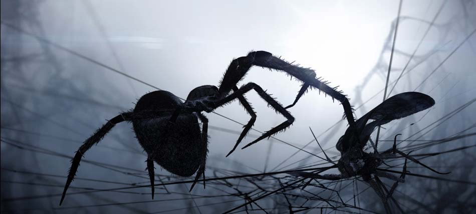A scene from the movie Loom, depicting a spider and moth (image: Polynoid)