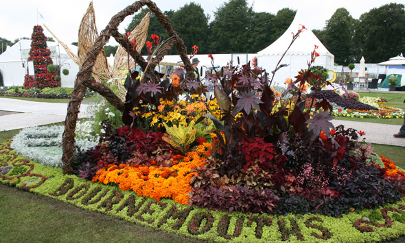 Bournemouth Borough Council Flower Bed at RHS Show Tatton Park