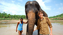 Simon encounters an Indian elephant in Satpura National Park