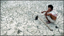 An Indian farmer waits for rain on his drought hit paddy field. AFP Getty.