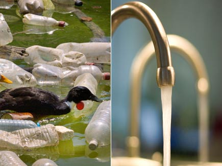 First half: Duck swimming in water filled with empty, dirty plastic bottles. Second half: Clean water from a tap.