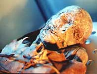 Image showing a male Guanche mummy